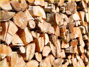 Березовые дрова лучший вид топлива для отопления помещения