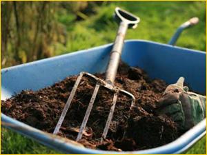 Выбираем качественное удобрение для огорода