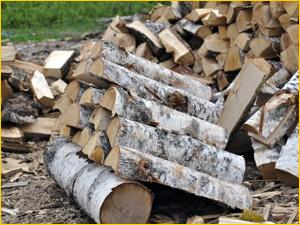березовые дрова для отопления гора дров