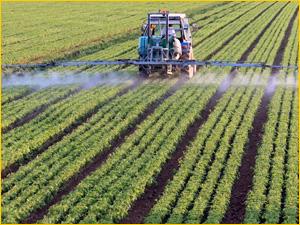 Трактор на поле наносит удобрения для роста