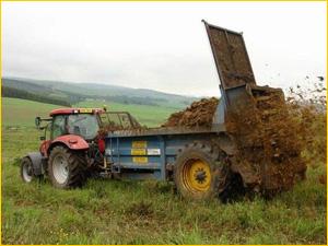Трактор распыляет конский навоз и удобрение на поле
