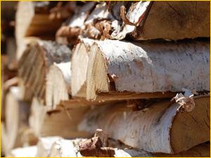 Березовые дрова для шашлыка и барбекю