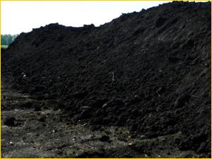 Чернозем с доставкой на дачу