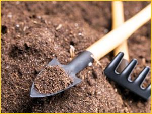Растительный грунт для сада и огорода