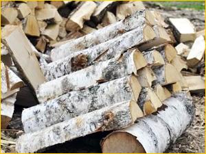 Поленца колотых березовых дров